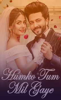 Humko Tum Mil Gaye Song Lyrics - Vishal Mishra